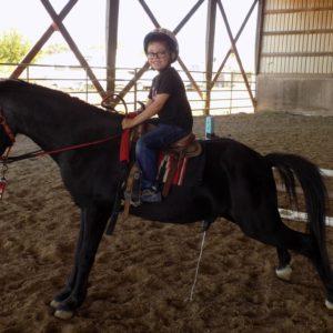 Like A Racehorse