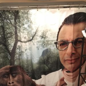 The Bathroom Goldblum