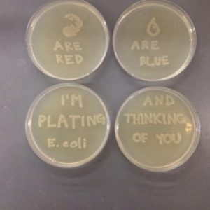 When A Man Loves A Microbiologist